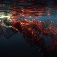Swim in the sun :: Дмитрий Лаудин