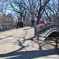 мостик в Городском парке :: Марина Титкова