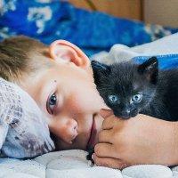 мои котики :: Светлана