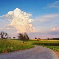 дорога в облака :: Elena Wymann