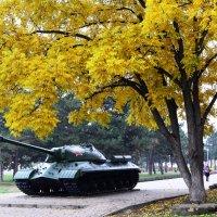 Осень в городе. :: Береславская Елена