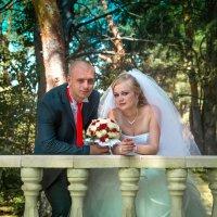 Свадьба :: Валерий Саломатин