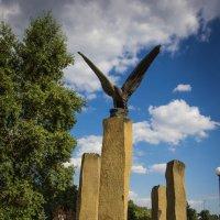 Сад камней. :: Андрей Нибылица