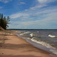 Тени на песке :: Константин