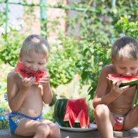 по-настоящему вкусное лето у мальчишек :: Наталья М