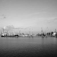 Порт Одесса :: Kid
