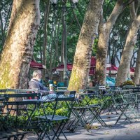 Отдых в парке :: Лёша