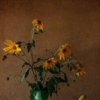 Натюрморт с тыквами :: Natalia Furina
