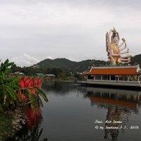Самуи, Тайланд :: Светлана FI