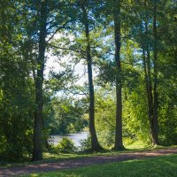 Август в парке :: Виталий