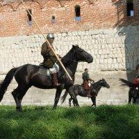 Зарайский ратный сбор :: Irina Shtukmaster