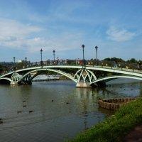 "мост в усадьбе  "" Царицыно"" :: Galina Leskova"