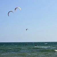 Кайт-серферы на волнах :: Ольга Мореходова