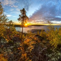 Пробуждаясь от солнца :: Фёдор. Лашков