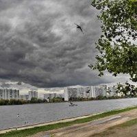 Перед грозой :: Владимир Брагилевский