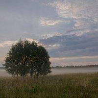 Раннее утро :: Валентин Котляров