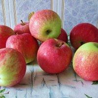 Яблочки медовые :: Татьяна Смоляниченко
