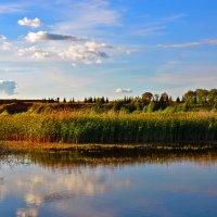Замирает озеро.... :: Юрий