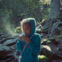Утро в горах :: Катерина Дмитриева