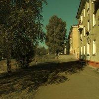 Чистый цвет :: Sozidatel Евгений Щербаков