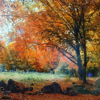 Осень :: Юрий Губков
