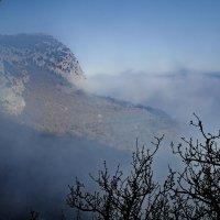 в туманной дымке :: valeriy g_g