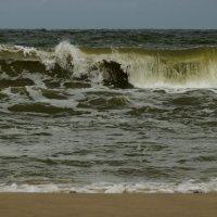 Балтика. Ветер с моря. :: Tatiana Golubinskaia