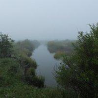 туманная река :: Анна
