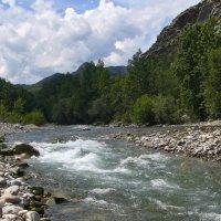 Река Большой Яломан, Горный Алтай. :: Александр Бормотов
