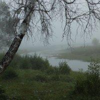 туман :: Анна