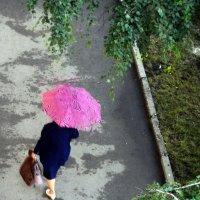 Под зонтом :: ирина