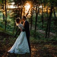 wedding :: Андрей Синенький