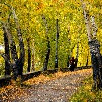 Осень пришла на дамбу :: Екатерина Торганская