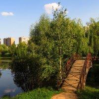 Что делать пока чинят велосипед :: Андрей Лукьянов