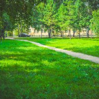 тропинки парка :: Света Кондрашова