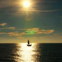 Horizon :: Alena Kramarenko