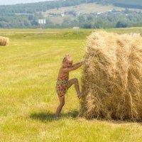 Бегите за трактором,я подержу!!! :: Борис Кононов