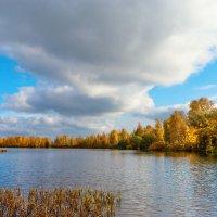 Осень на Разливе 2 :: Виталий