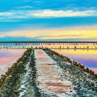 Розовое озеро :: Денис Стеценко