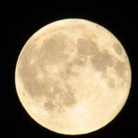 Луна... ууууу.... :: Елена Милая