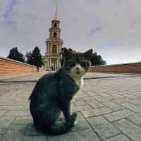 остановите музыку :: Вадим Виловатый