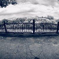старая ограда :: Вадим Виловатый