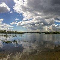 Лето. У реки. 3. :: Vadim Piottukh
