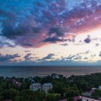 Сочи :: Max Golovanov