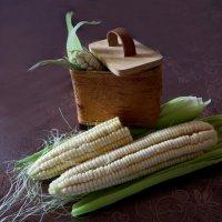 Кукуруза :: Наталья Джикидзе (Берёзина)