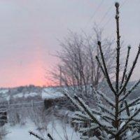 зима :: СЕРГЕИ фокс