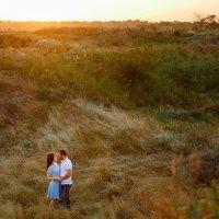 Фотография которая передает запах теплой травы.... :: Дмитрий Катин