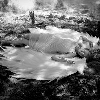 Когда ангелы спят... :: Аркадий Назаров