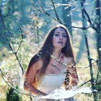 В лесу :: Olga Kovalski