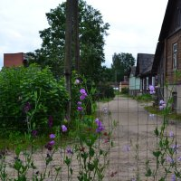 Улица детства.. :: zoja